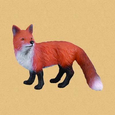 Рыжая лисица (Red Fox)
